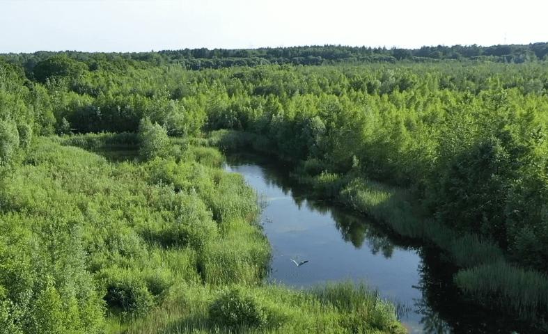 Potenzielle Fläche Deponie Langwedel